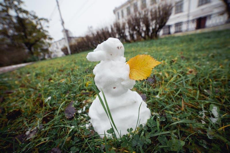 Hierba del muñeco de nieve con la hoja amarilla Imagen granangular divertida imagen de archivo libre de regalías
