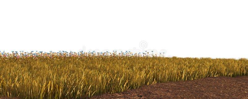 Hierba del otoño aislada en el ejemplo blanco del fondo 3D foto de archivo libre de regalías