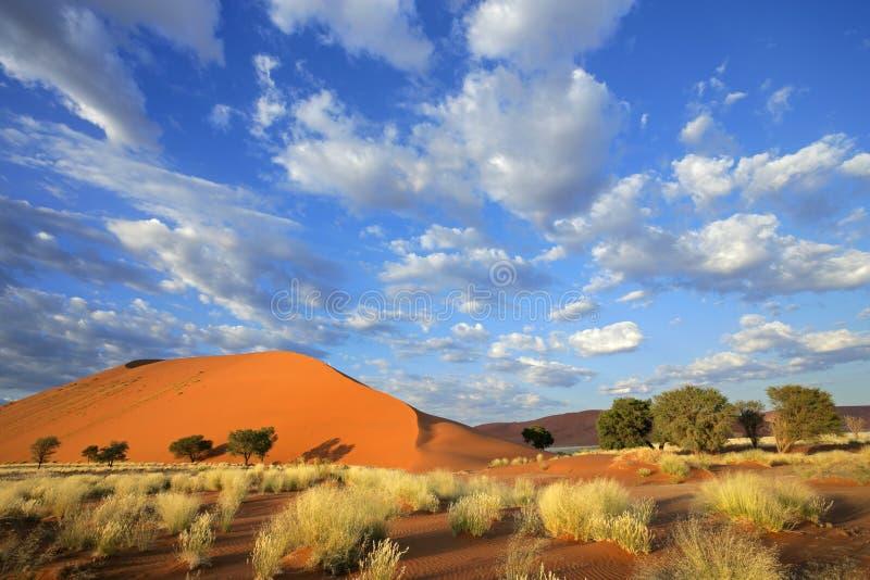 Hierba, duna y cielo, Nambia imagenes de archivo
