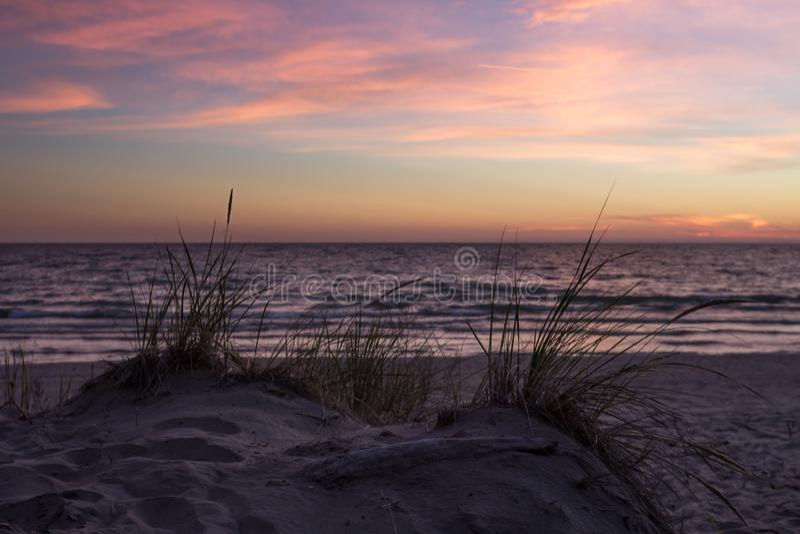 Hierba en dunas de arena imagen de archivo