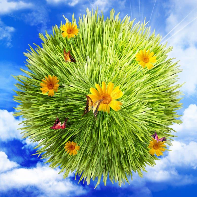 Hierba, flor y mariposa en las nubes foto de archivo