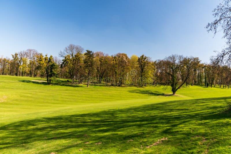 Hierba fresca de la primavera en campo de golf con los árboles en el fondo y el cielo claro cerca del castillo francés de Silhero fotos de archivo