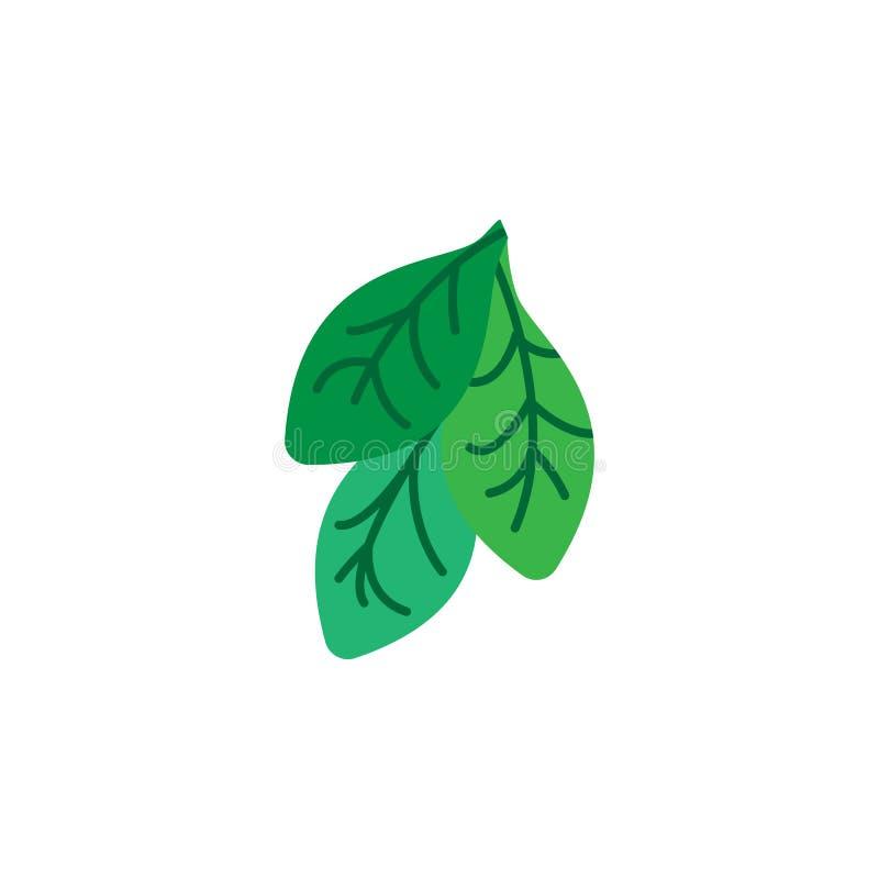 Hierba, icono de la espinaca Elemento del icono de la hierba para los apps móviles del concepto y de la web La hierba detallada,  libre illustration