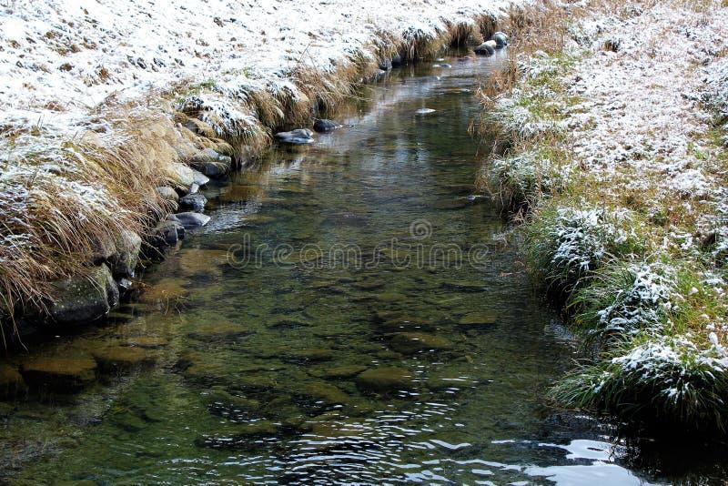 Hierba nevada en un riverbank en Japón foto de archivo libre de regalías