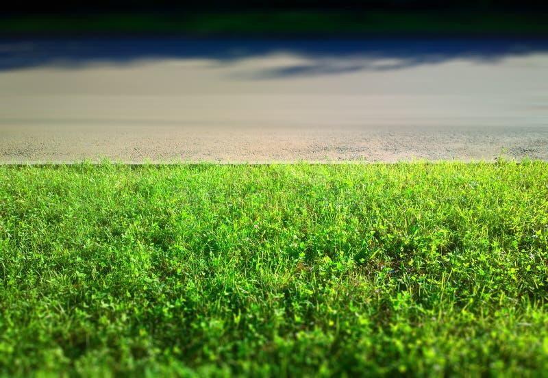 Hierba verde cerca del fondo del camino de ciudad imágenes de archivo libres de regalías