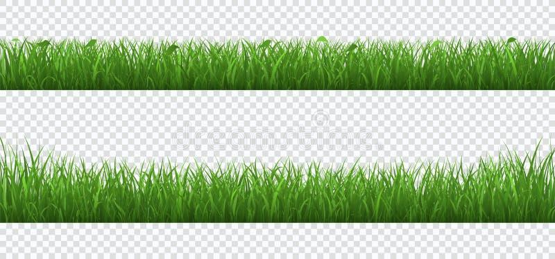 Hierba verde con la frontera de las plantas fijada aislada en fondo transparente stock de ilustración