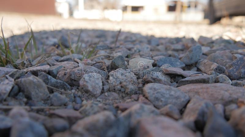 Hierba verde de la pequeña pequeña piedra de piedra foto de archivo libre de regalías