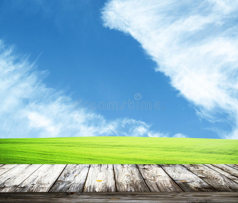 Hierba verde de la primavera fresca con el cielo azul y el piso de madera imagen de archivo libre de regalías