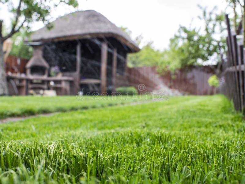 Hierba verde en la yarda trabajos de riego del césped Cenador de madera fotos de archivo libres de regalías