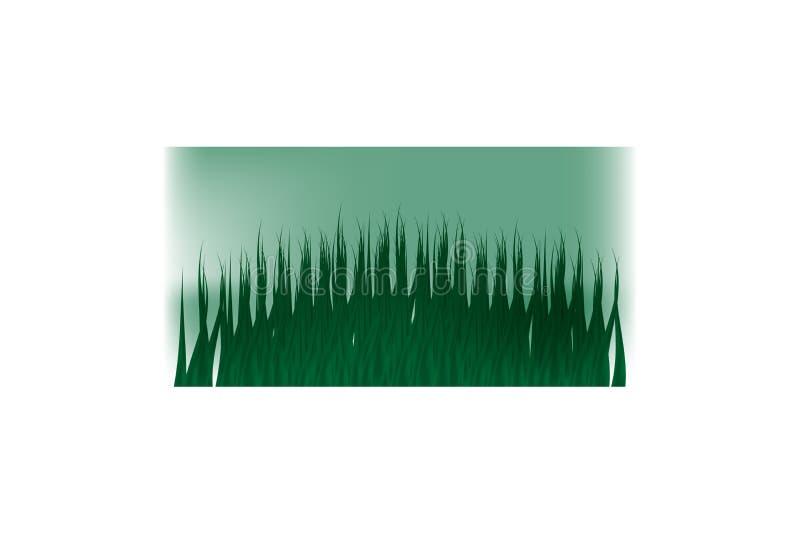 Hierba verde en un fondo transparente claro en la hierba del bosque Manzanillas en el claro ilustración del vector