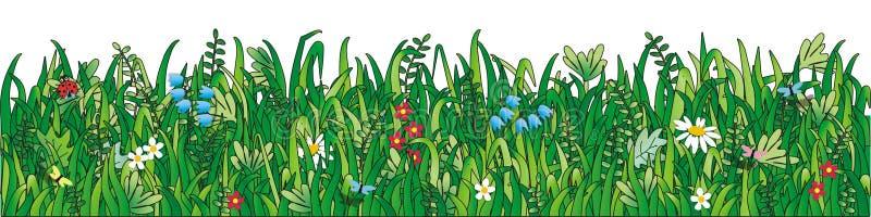 Hierba verde, flores salvajes stock de ilustración