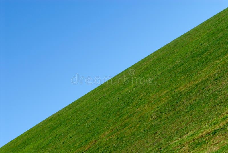 Hierba verde, fondo del cielo azul fotografía de archivo