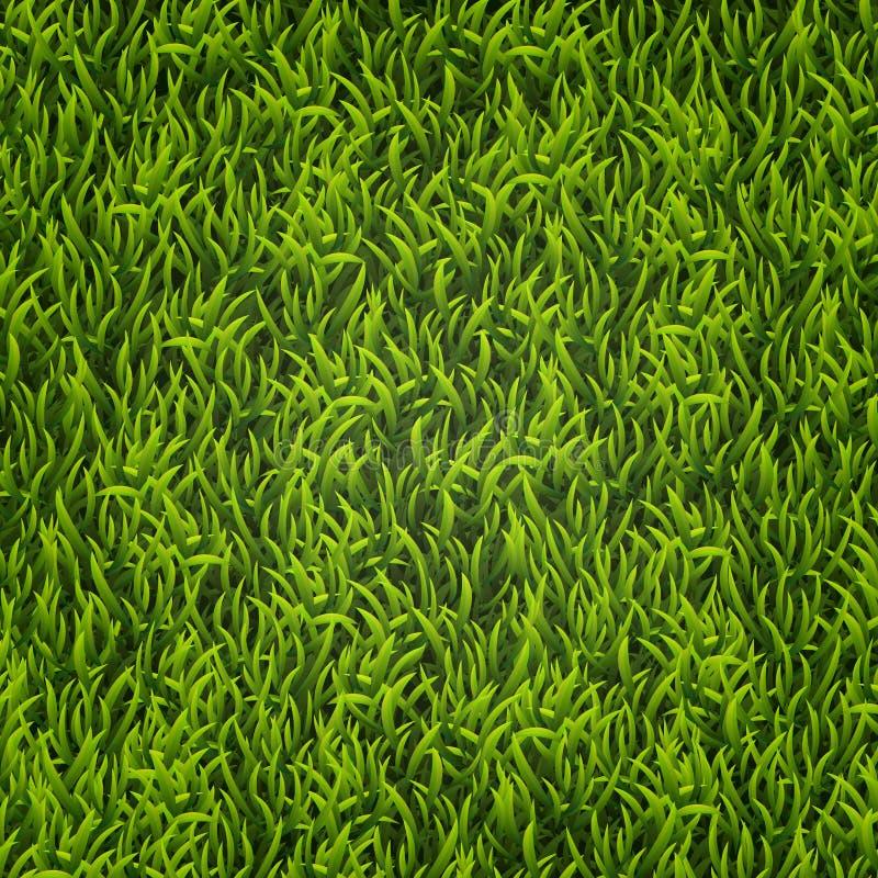 Hierba verde Fondo natural Textura Hierba alta Hierba verde del resorte fresco stock de ilustración