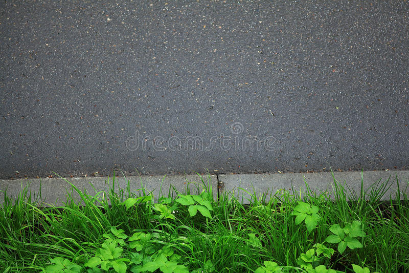 Hierba verde fresca imagenes de archivo