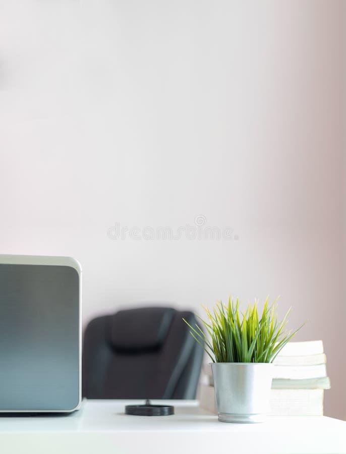 Hierba verde fresca en el escritorio de oficina con el espacio de la copia fotos de archivo
