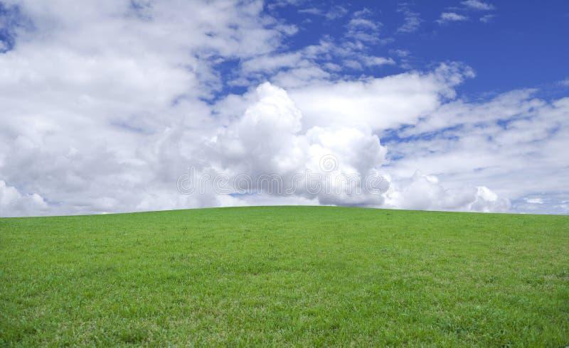 Hierba verde y cielo azul fotos de archivo