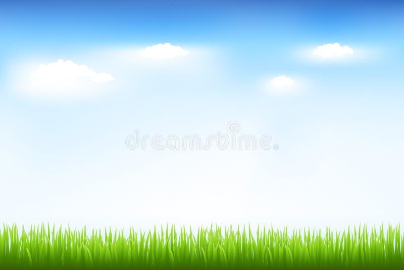Hierba verde y cielo azul stock de ilustración