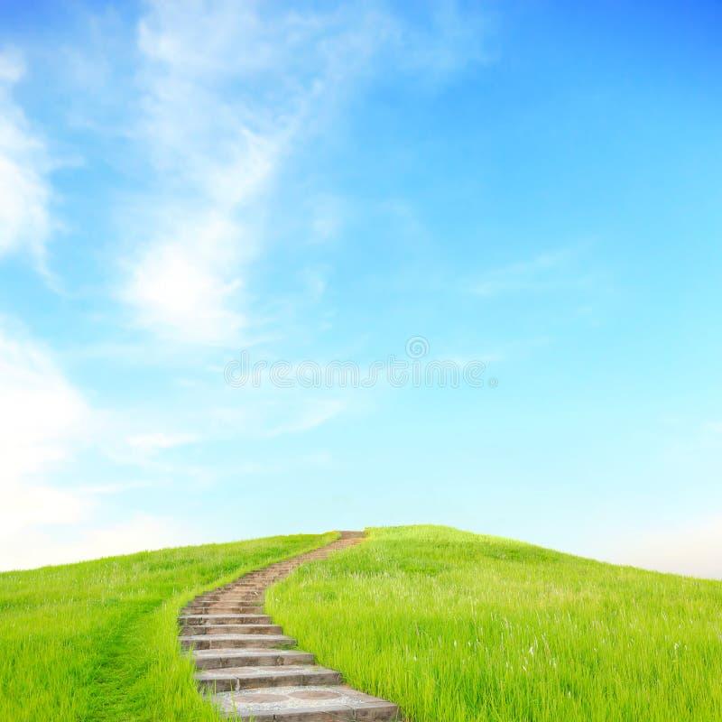 Hierba verde y escaleras ascendentes imagen de archivo