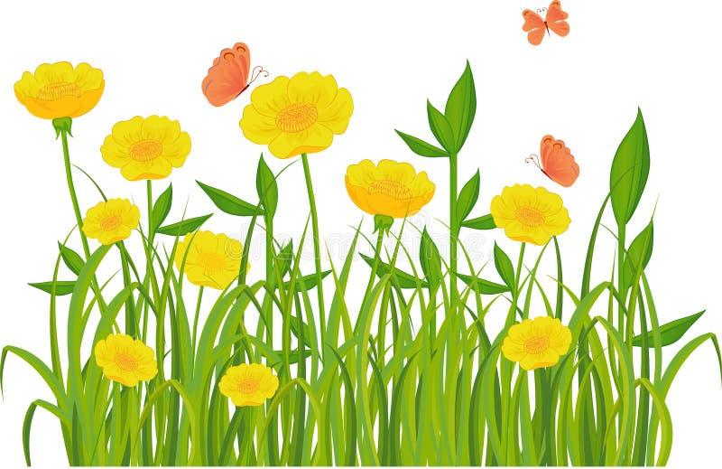 Hierba verde y flores aisladas en blanco stock de ilustración