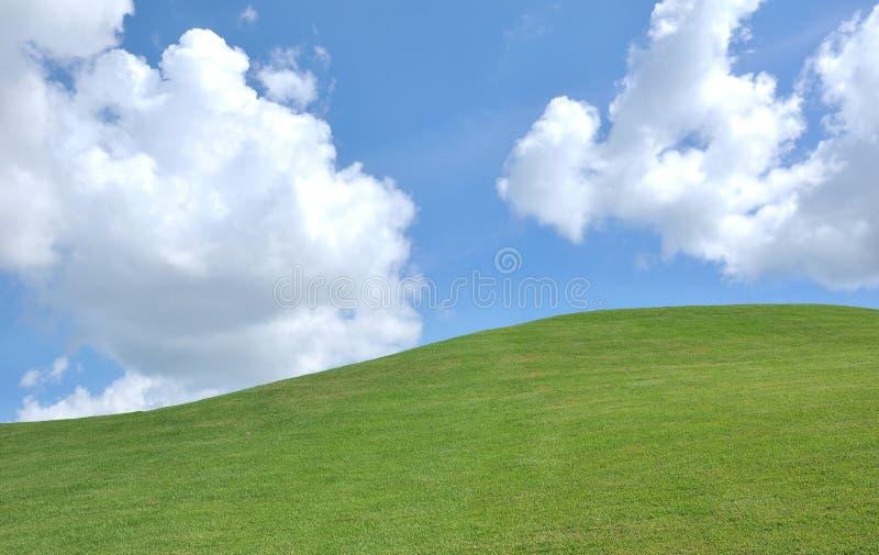 Hierba y cielo frescos fotos de archivo libres de regalías