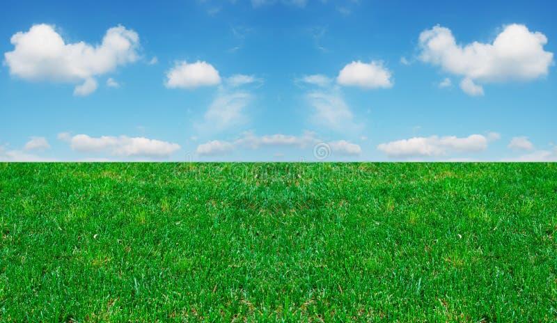 Hierba y cielo nublado imágenes de archivo libres de regalías