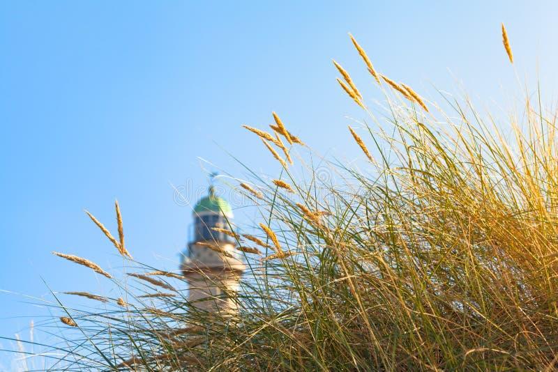 Hierba y faro de la playa en la luz del sol imagen de archivo