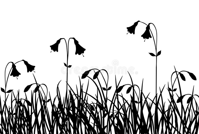 Hierba y flor, vector ilustración del vector