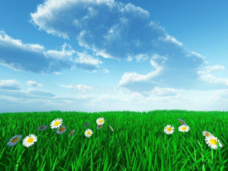 Hierba y flores blancas ilustración del vector