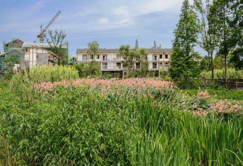 Hierba y flores en agua antes de edificios de la vivienda del campo imágenes de archivo libres de regalías