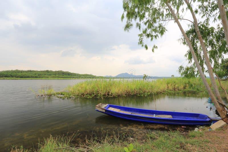 Hierba y rowing del río imagenes de archivo
