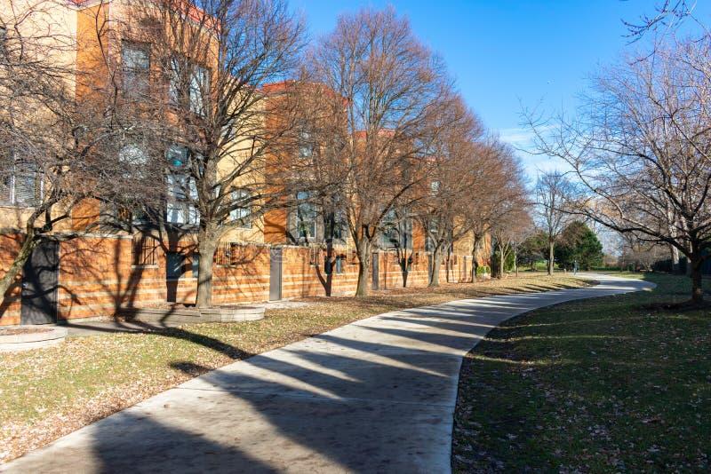 Hierba y trayectoria alineada árbol con los edificios residenciales en Edgewater Chicago imagen de archivo
