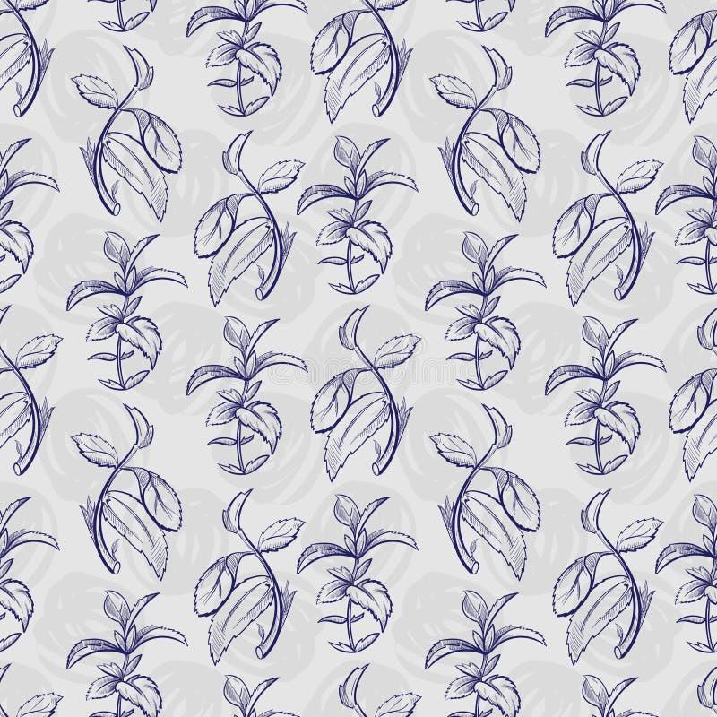 Hierbabuena del bosquejo de la pluma stock de ilustración