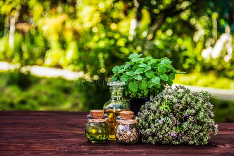 Hierbas aromáticas y aceites esenciales Pote del tomillo y de la menta Vinagre y petróleo imágenes de archivo libres de regalías