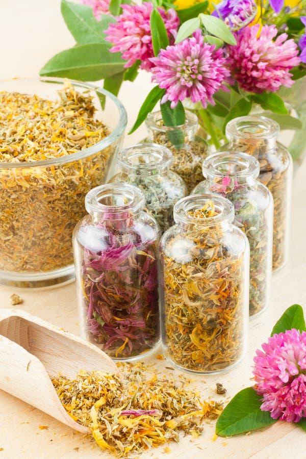 hierbas curativas en las botellas de cristal, medicina herbaria foto de archivo
