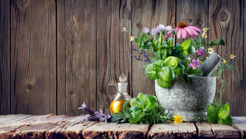 Hierbas curativas y aceite esencial en botella con el mortero imagen de archivo libre de regalías
