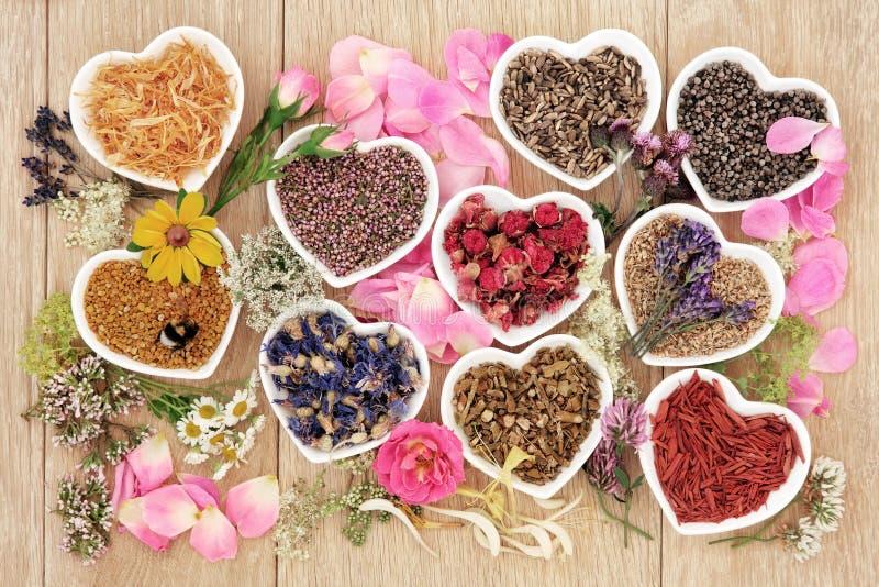 Hierbas curativas y flores fotografía de archivo