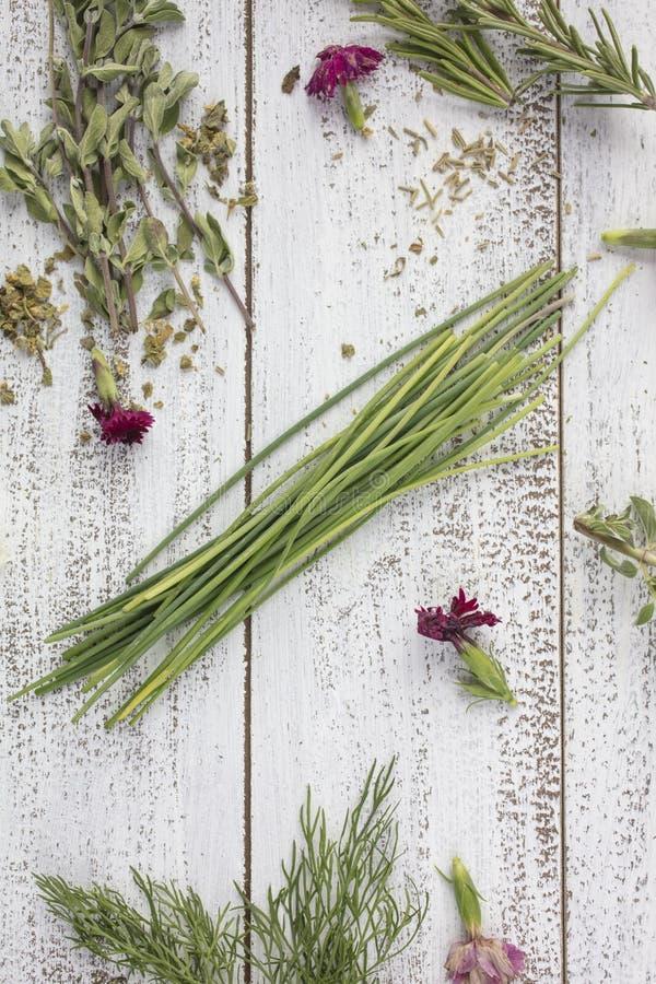 Hierbas del estragón, de Rosemary, de las cebolletas, del sabio, de la mejorana y del eneldo en un r fotografía de archivo libre de regalías