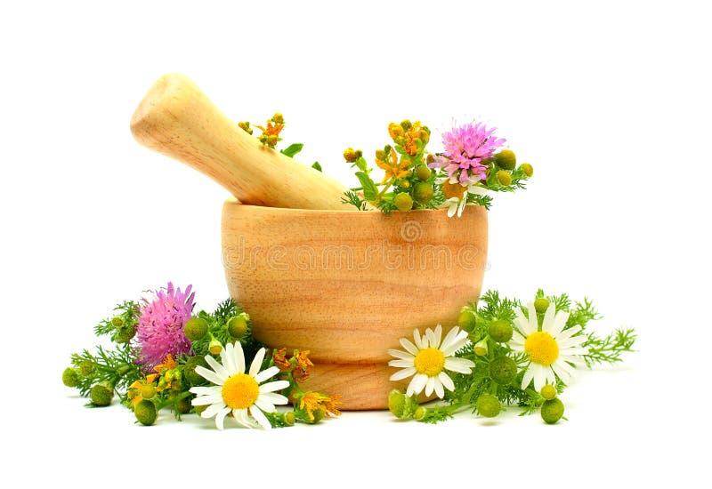 Hierbas, flores y mortero de la medicina fotografía de archivo