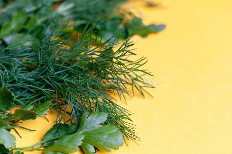Hierbas frescas eneldo, perejil en el fondo de papel amarillo Visión superior Copie el espacio foto de archivo
