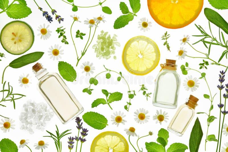 Hierbas frescas, frutas y aceite esencial imagen de archivo libre de regalías