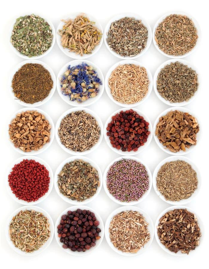 Hierbas medicinales y mágicas foto de archivo