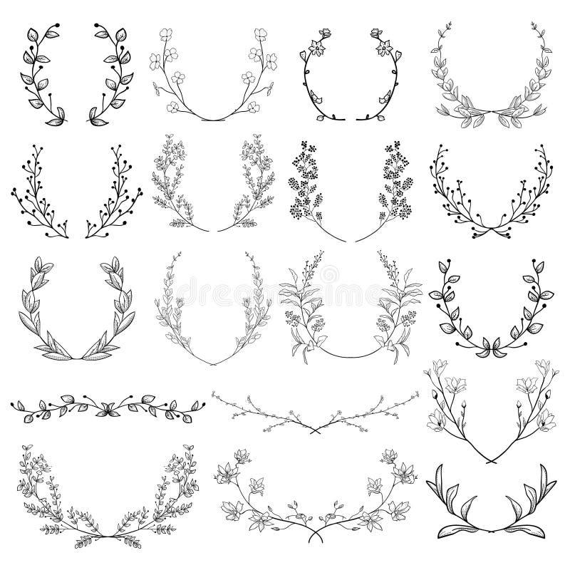 Hierbas, plantas y flores Ramas, laureles, soportes stock de ilustración