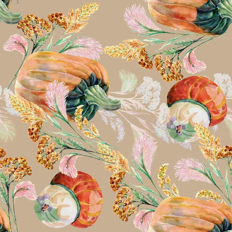 Hierbas salvajes de la acuarela con la calabaza en un fondo rosado stock de ilustración