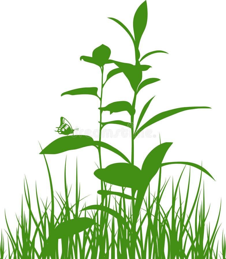 Hierbas verdes del prado con la mariposa. libre illustration