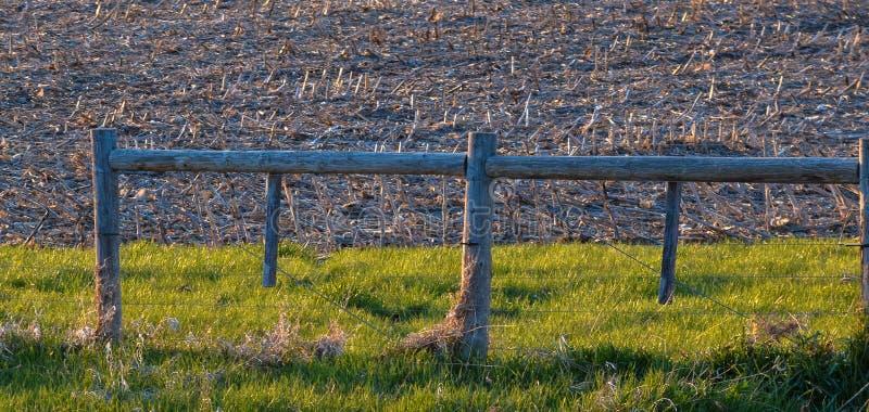 Hierbas y cerca de oro de la granja imagen de archivo libre de regalías