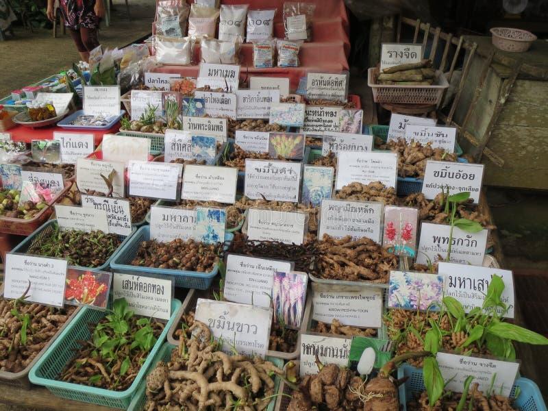 Hierbas y especia tailandesas septentrionales de Tailandia imágenes de archivo libres de regalías