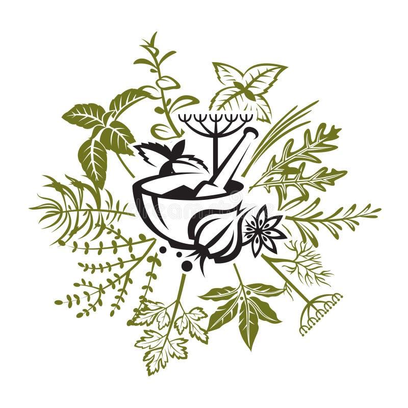 Hierbas y especias stock de ilustración
