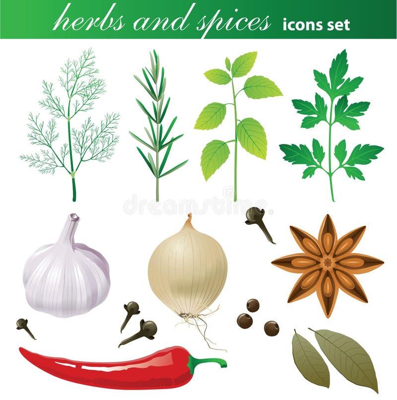 Hierbas y especias fijadas stock de ilustración