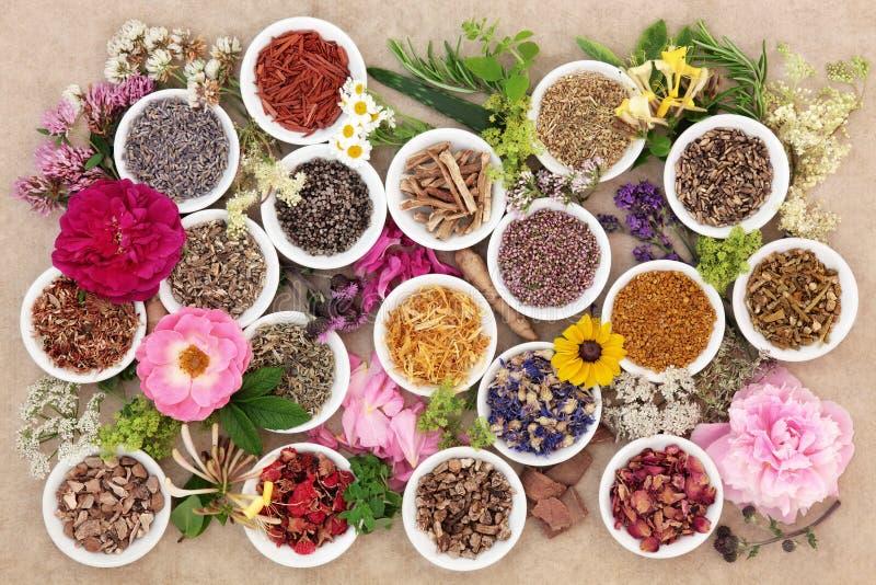 Hierbas y flores para curar imagen de archivo