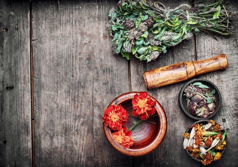 Hierbas y plantas medicinales fotografía de archivo libre de regalías